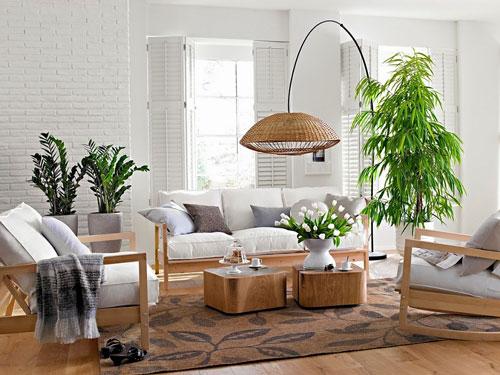 trang trí phòng khách với cây xanh